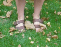 birkenstocks in de herfst