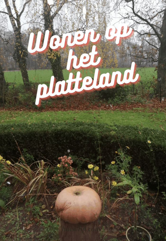 Wonen op het platteland: the good, the bad and the ugly
