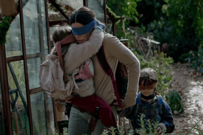 Netflix tip: The Bird Box met Sandra Bullock