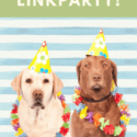 Week 29 Zondag Linkparty