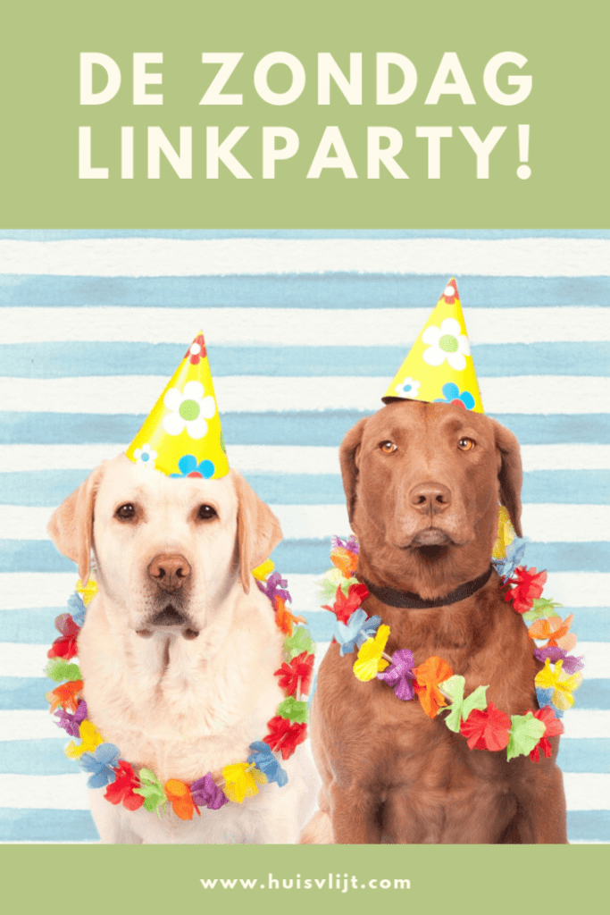 Zondag Linkparty 2020 week 19